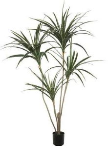 artificial yucca