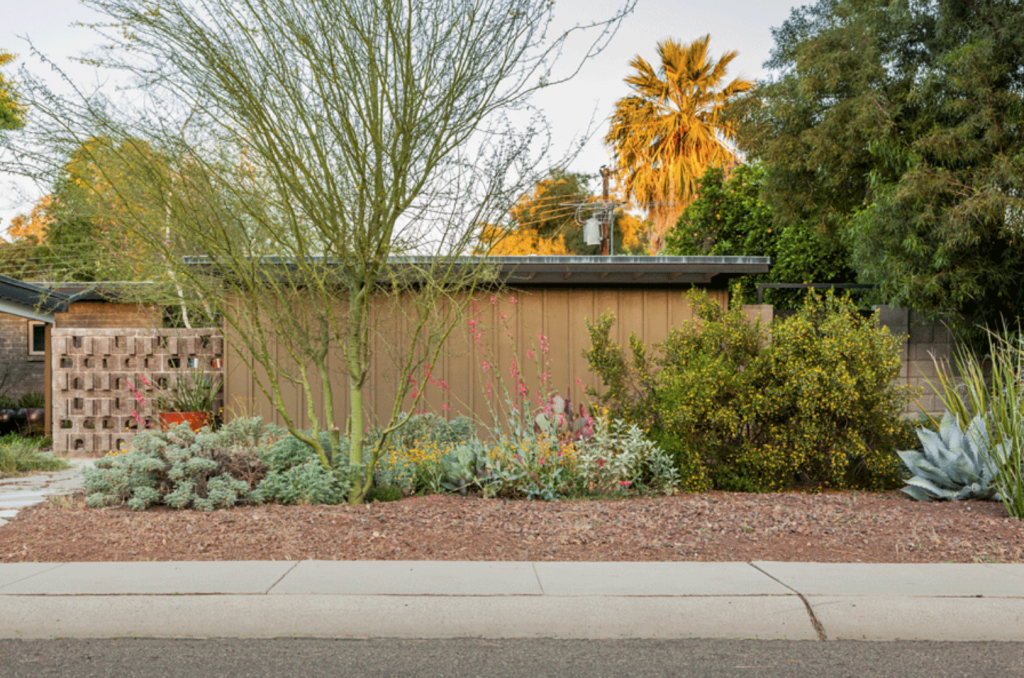Xeriscape 101: Learn the basics for a Stylish Low-H20 Landscape