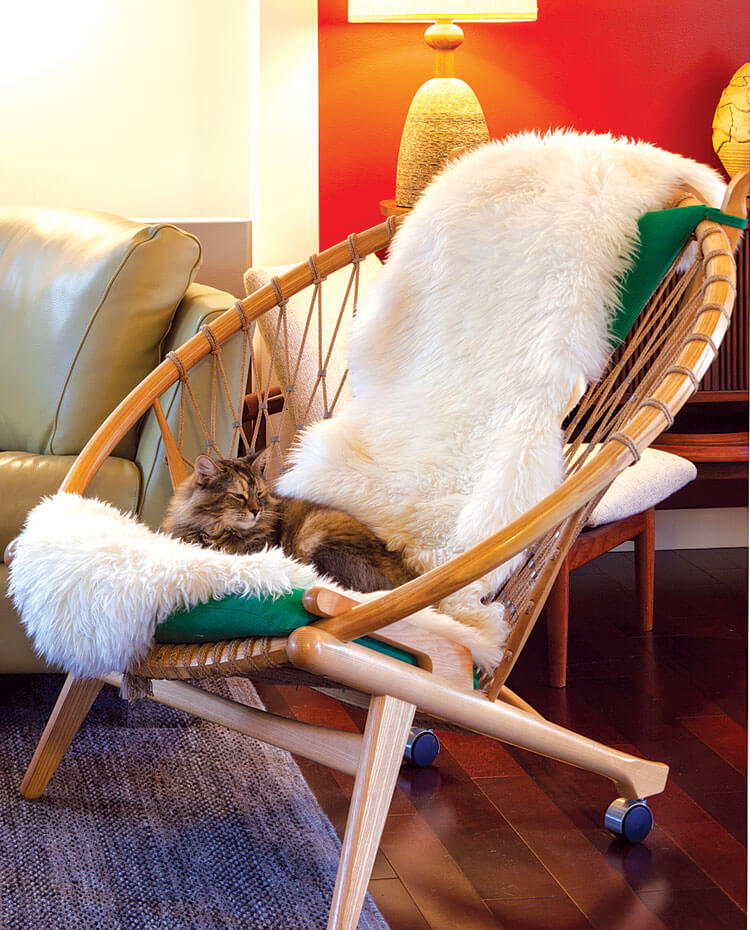 Cat lounging in a wicker-net chair with a faux fur throw.