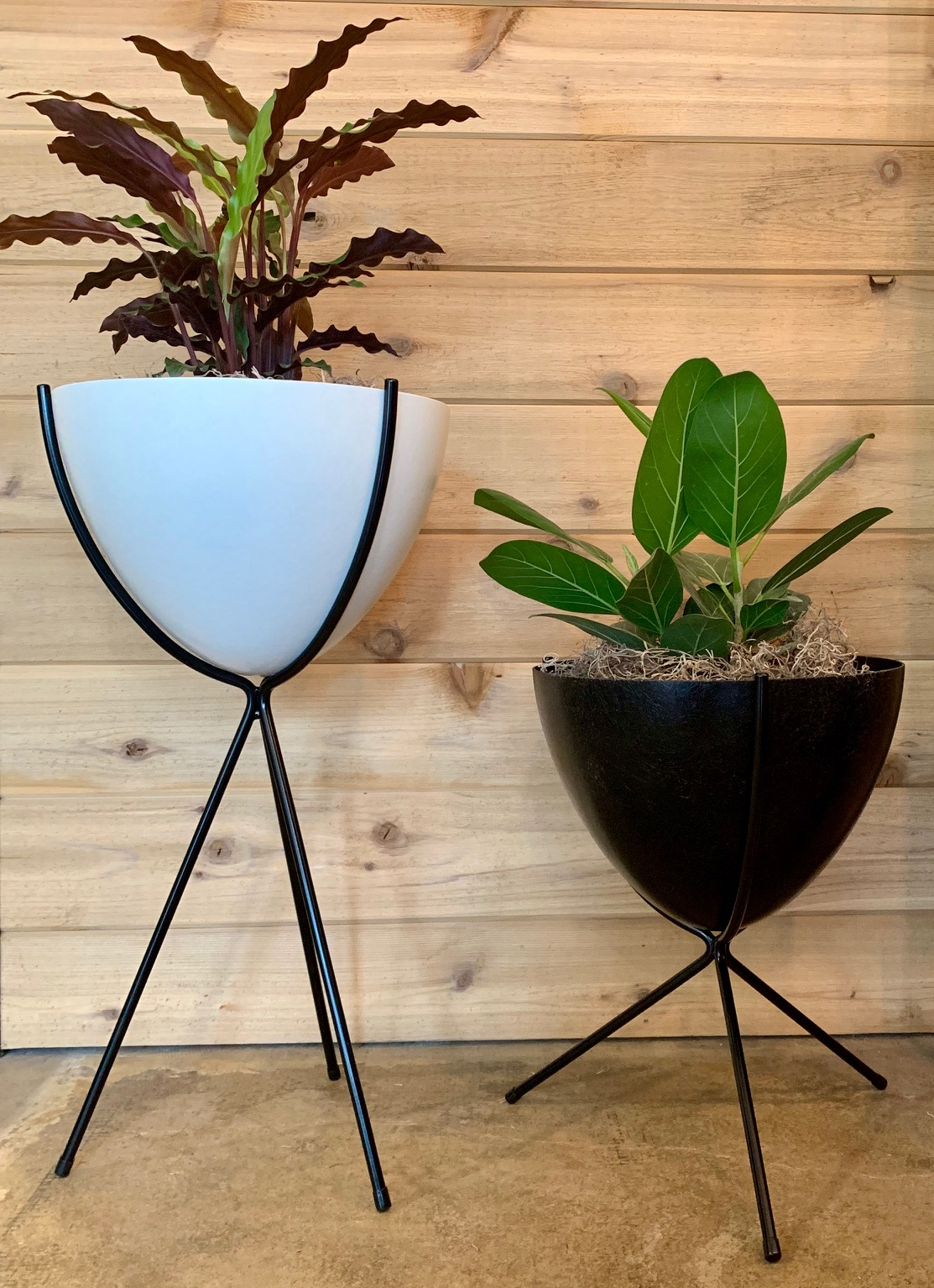 black and white assorted and affordable bullet planters.