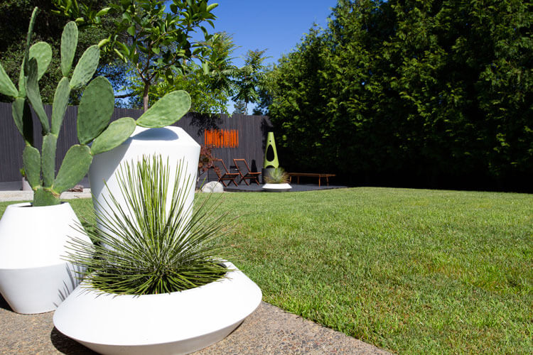 Mod backyard landscaping with grass lawn and desert plants in retro planters