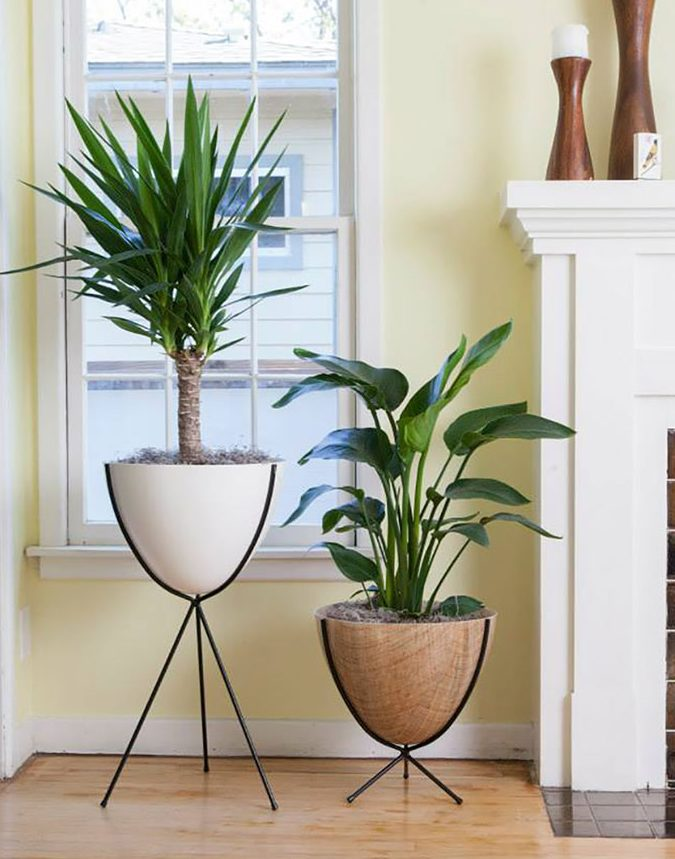 Two Retro Hip Haven Planters in White and Ratan Colors by a fireplace