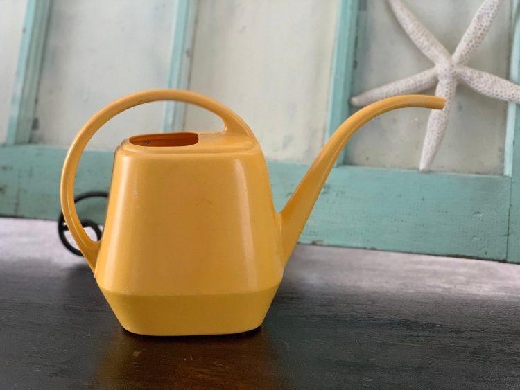 plant lover gifts watering can