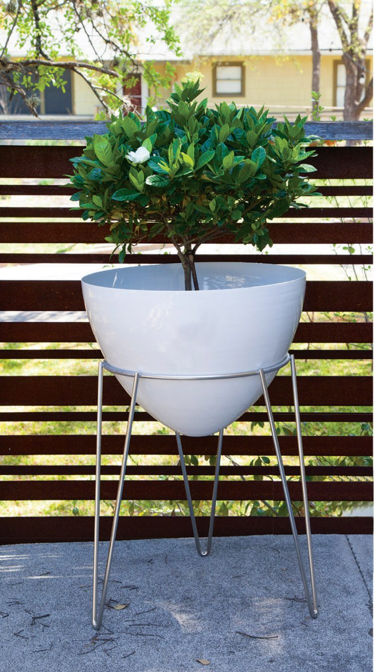 A white bullet planter with a small tree extending out of it.