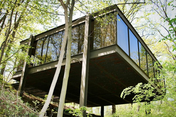 Mid century movie glass box home in the forest.