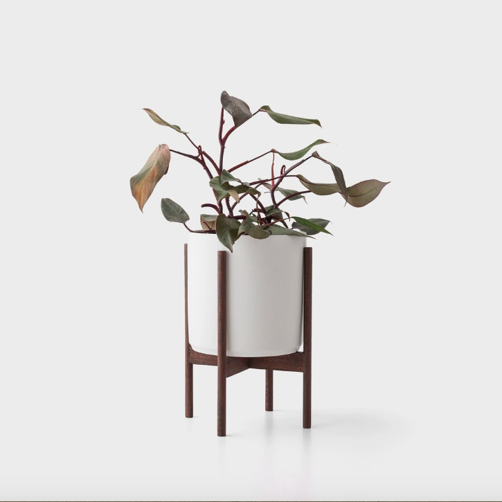 White plant pot in a modern wooden stand.
