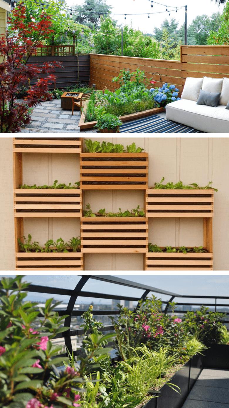 Your Modern Vegetable Garden Guide