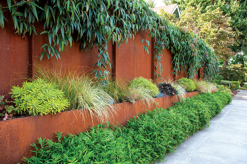 Hedge Of Your Seat Modern Hedges Border Planting Ideas Home