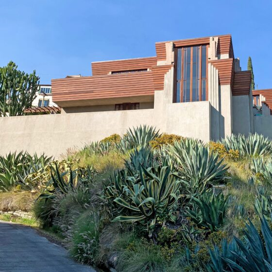 Art deco two story home with large rectangular window and cement and wood fascade with succulents and agave plants.