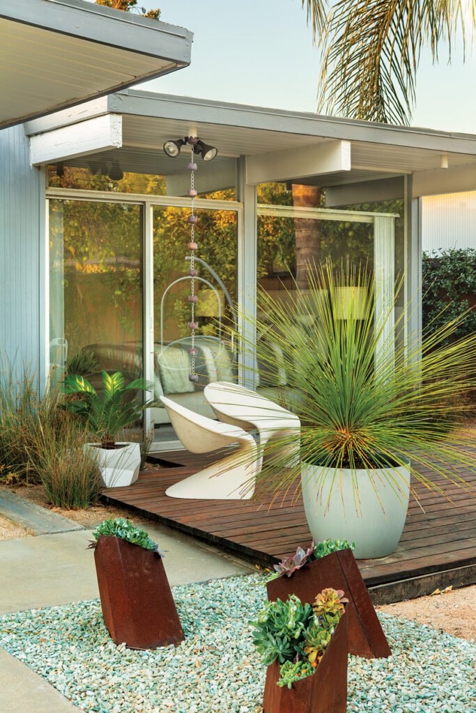 Low-water planters and succulents for the back yard